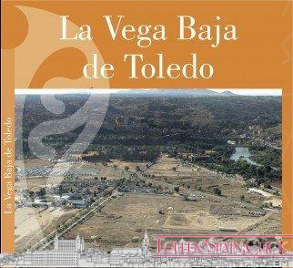 The Lower Vega of Toledo
